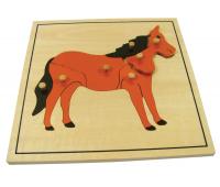 [Vkladacie puzzle - Kôň]