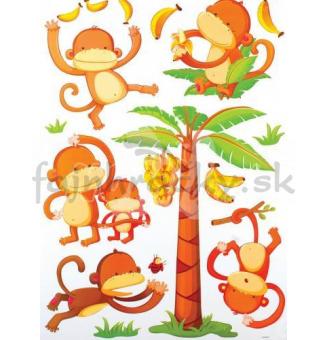 Nálepky - Opičky